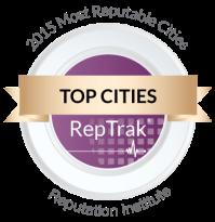 CityRepTrak2015-01